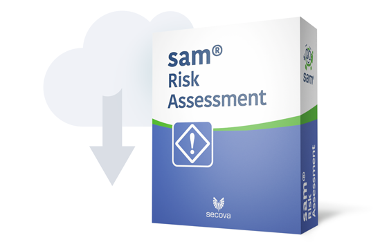 Risk assessment software online