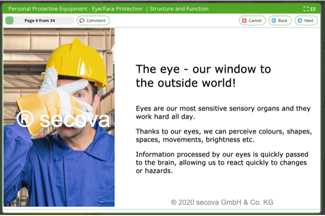 topic-ppe-eye